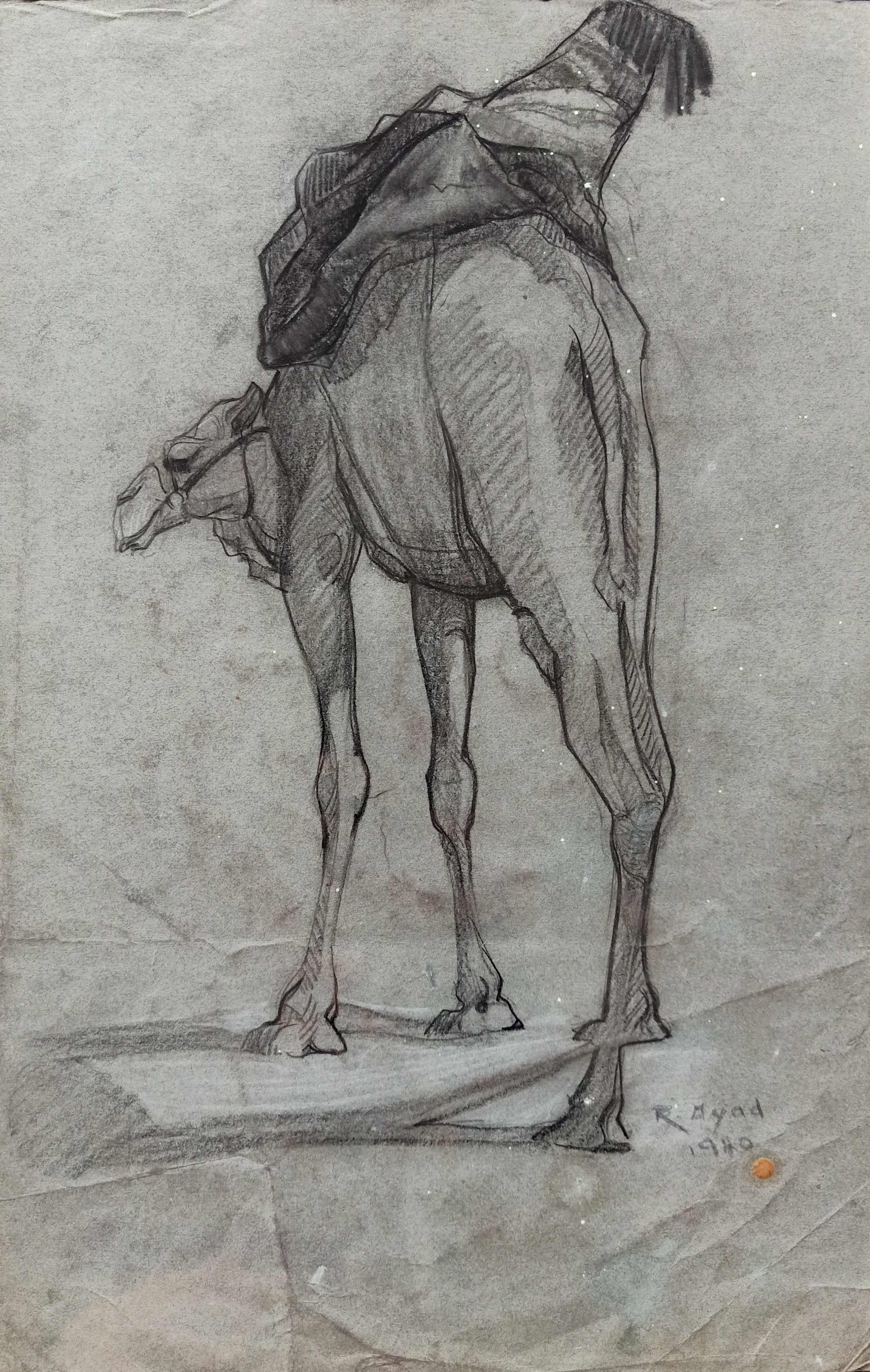 Ragheb Ayad, Dromadaire, 1940. Pencil on paper 45×29 cm Signed and dated bottom right.