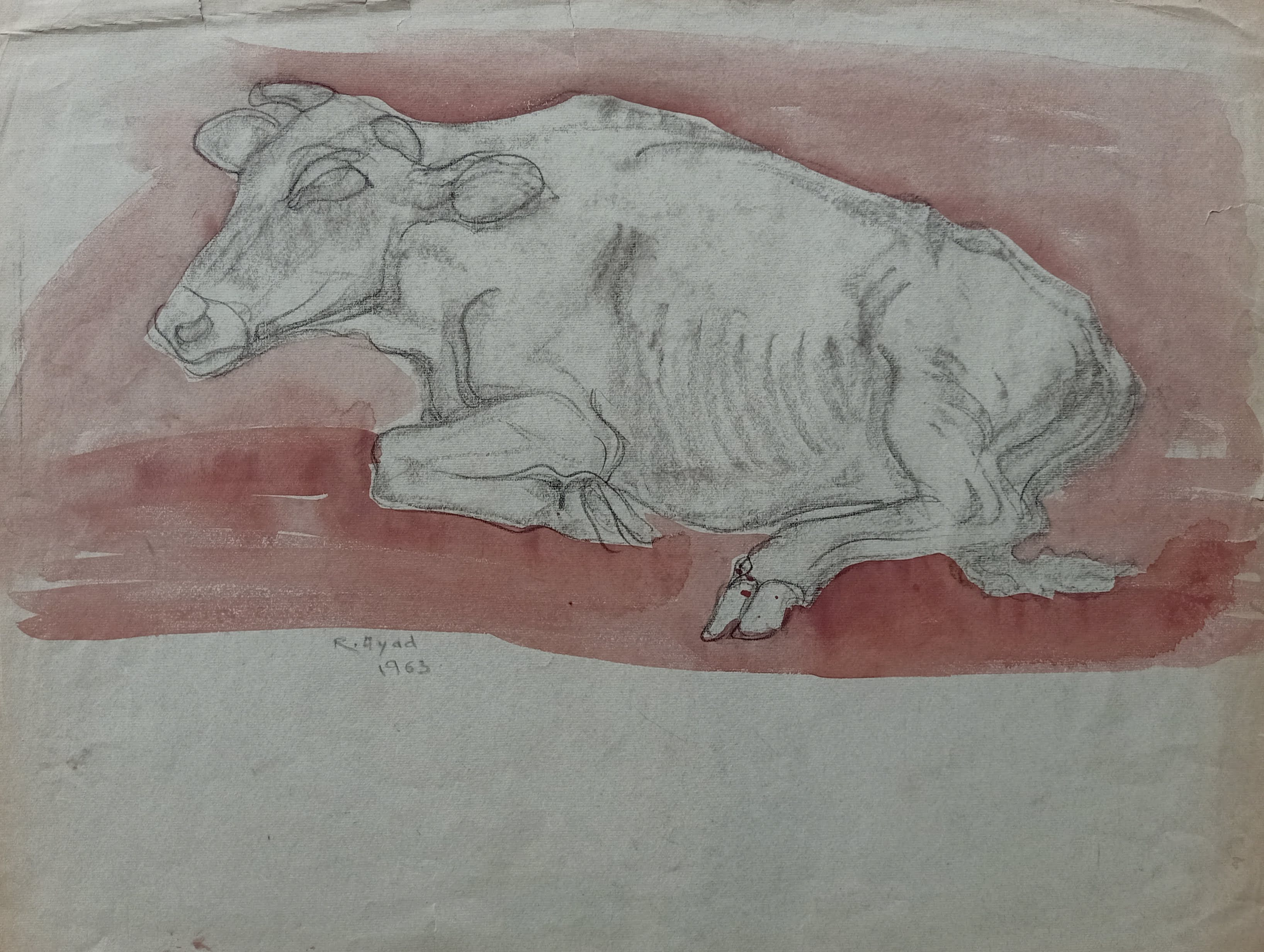 Ragheb Ayad, Sitting Cow 1963 Mixed media on paper 48×63 cm Signed and dated bottom left