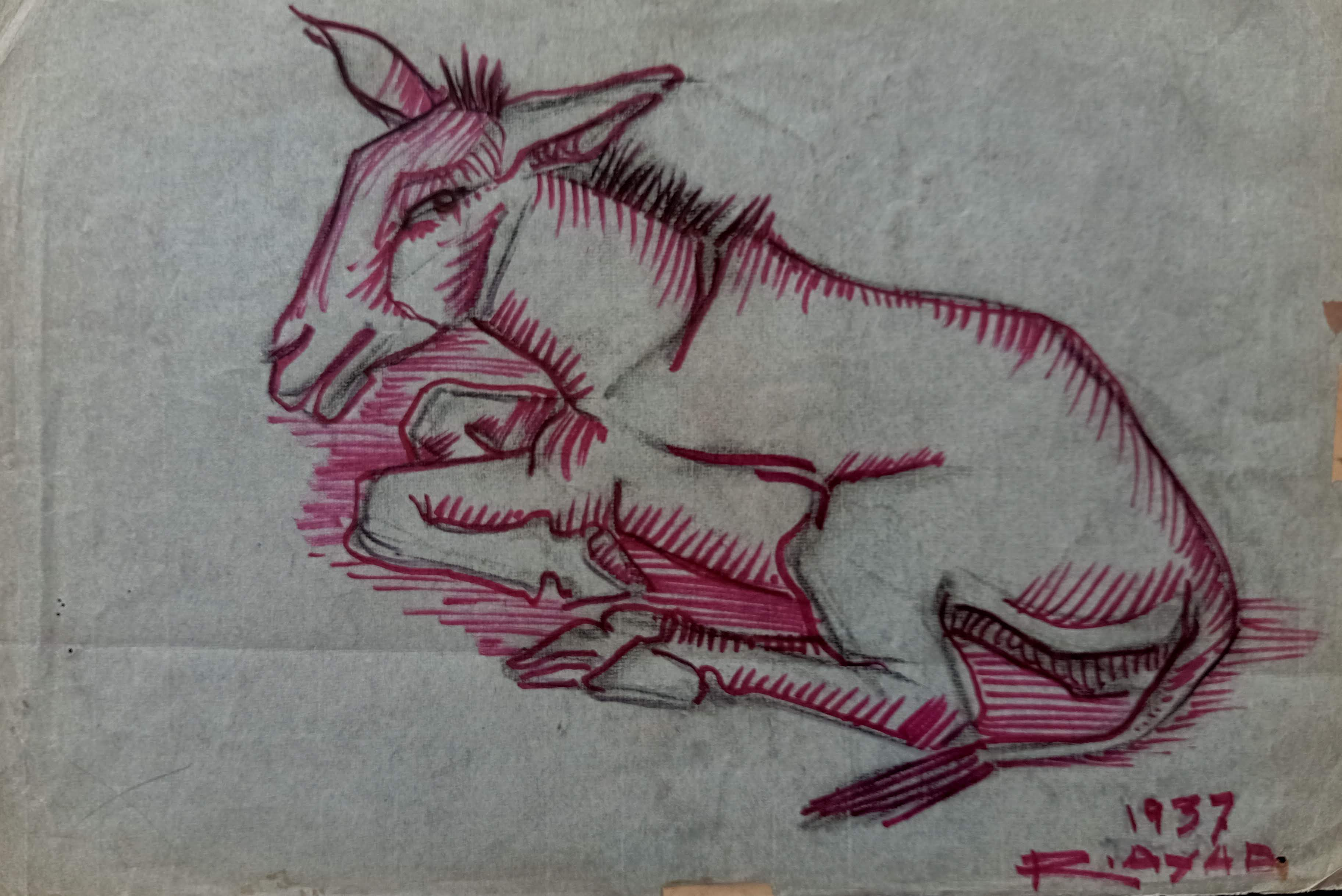 Ragheb Ayad, Seated Pink Donkey, 1937. Mixed media on paper 33×48 cm Signed and dated bottom right.